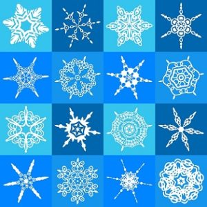 The Art of Creating a Nonprofit CoA Snowflakes 315 x 315